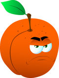 Angry peach Stock Images