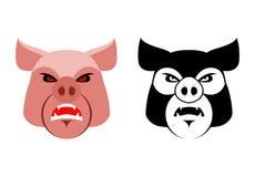 Angry pig. Aggressive wild boar. Logo big boar. grumpy farm anim Royalty Free Stock Photos