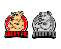 Angry Pig Cartoon Mascot Logo Royalty Free Stock Image