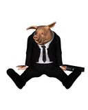Angry Pig dressed as Business Man - 3. 3d Digital render of an angry pig dressed as a businessman and carrying a briefcase Stock Image