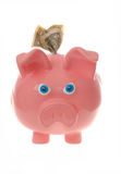 Angry piggy bank; has money and mad expression. This stock photo shows a piggy bank with dollar bills and has a very angry expression, perhaps because of a bad Stock Photos