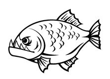 Angry piranha. Fish in cartoon style isolated on white background Royalty Free Stock Image