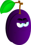 Angry plum Royalty Free Stock Photo