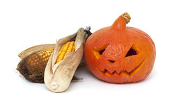 Angry pumpkin and dired corn cobs Royalty Free Stock Photo