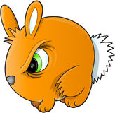 Angry Rabbit Vector Royalty Free Stock Images