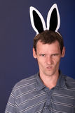 Angry rabbit. Very angry man with rabbit ears on dark background Royalty Free Stock Photos