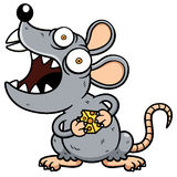 Angry rat. Vector illustration of Cartoon Angry rat Stock Images