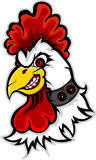 Angry rooster head cartoon Stock Images