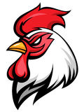Angry rooster. Mascot, team symbol, isolated on white Royalty Free Stock Image