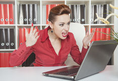 Angry screaming business woman working with compute Royalty Free Stock Photos