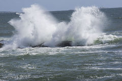 Angry sea. A  wave crashing into a rock during high tide Stock Images