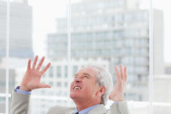 Angry senior manager. Raising his arms Stock Images