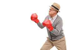 Angry senior with red boxing gloves. Prepared for a fight isolated on white background Royalty Free Stock Images