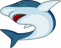 Angry shark Stock Image