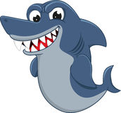 Angry Shark Royalty Free Stock Photography