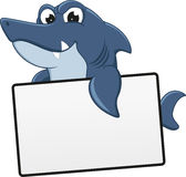 Angry Shark With Blank sign Stock Image