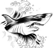 Angry shark. Ink drawing of an angry shark in the ocean royalty free illustration