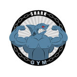 Angry strong shark. Shark bodybuilder with big biceps. Emblem fo Royalty Free Stock Photos