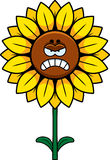 Angry Sunflower Royalty Free Stock Image