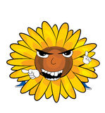 Angry sunflower cartoon Royalty Free Stock Images