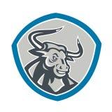 Angry Texas Longhorn Bull Shield Royalty Free Stock Image