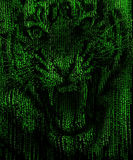 Angry tiger face in a matrix background. Angry tiger face in a corded green matrix abstract background Royalty Free Stock Photo