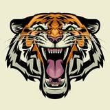 Angry tiger head. Vector of angry tiger head stock illustration