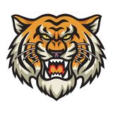 Angry Tiger Head Vector vector illustration