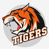 Angry Tiger Sport team emblem Royalty Free Stock Photo