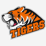 Angry Tiger Sport team emblem Stock Photos