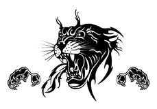 Angry Tiger sports mascot Royalty Free Stock Photography