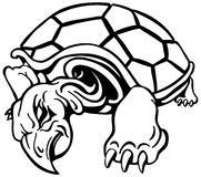 Angry Turtle Stock Image