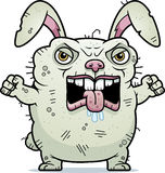 Angry Ugly Bunny Royalty Free Stock Photo