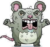Angry Ugly Rat Royalty Free Stock Photos