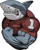 Angry white shark. Vector illustration, toothy shark shows great biceps Royalty Free Stock Image