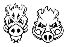 Angry wild boar heads character Royalty Free Stock Image