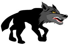 Angry Wolf Approaching its Prey. Illustration of an angry wolf showing their teeth and approaching its prey isolated on white background. Eps file is available royalty free illustration