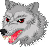 Angry wolf cartoon character Stock Image