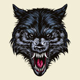 Angry Wolf Head Mascot Stock Photo