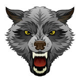 Angry wolf head Royalty Free Stock Photos