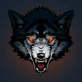 Angry wolf illustration Stock Photo