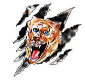 Angry wolf paw tear scratch mark Stock Photos