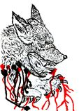 Angry Wolf Sketch Stock Images