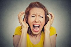 Angry woman screaming hysterical. Portrait angry woman screaming wide open mouth hysterical  grey background. Negative human face expression emotion bad feeling Royalty Free Stock Images