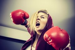 Angry woman wearing boxing gloves stock image