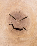 Angry wood head Royalty Free Stock Images