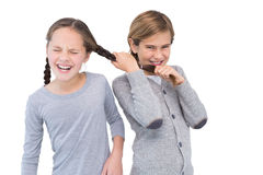 Angry young boy pulling sister hair in a fight. On white background royalty free stock photography