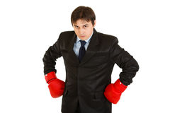 Angry young businessman with boxing gloves Royalty Free Stock Image