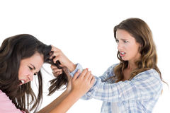Angry young woman pulling females hair in a fight stock photo