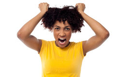 Angry young woman pulling her hair out. Irritated woman pulling her hair with both hands, screaming aloud Royalty Free Stock Images